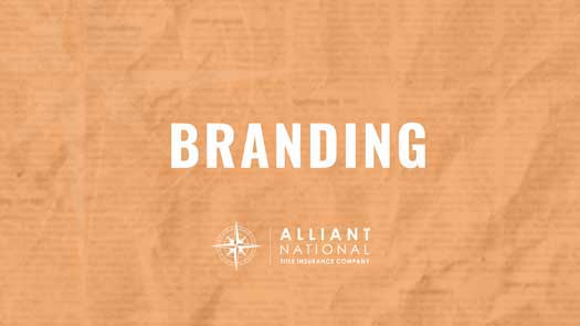 Graphic - orange branding